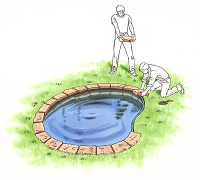 how-to-install-a-water-garden-pond-8