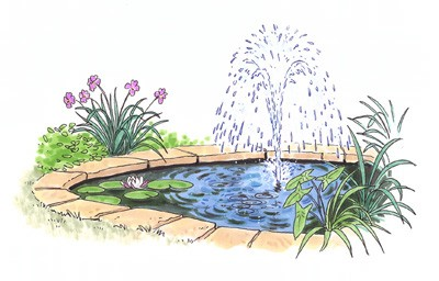 how-to-install-a-water-garden-pond-11